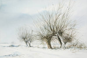 Win  willows by stefanzhuty