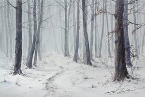 Zimowy-las