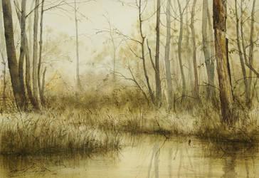 Lesna-rzeka
