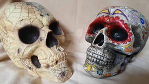 First Impression Skulls