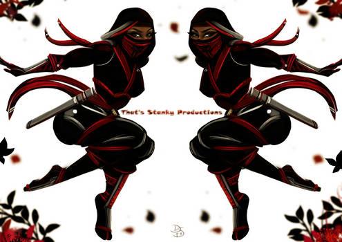 mirror ninja.
