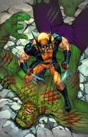 Hulk vs Wolverine by TeoGonzalezColors