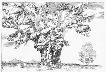 Tree -  pen and ink by hanestetico