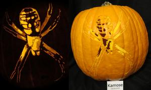 Garden Spider Pumpkin (Argiope aurantia)
