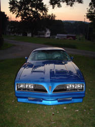 The Firebird, picture 1