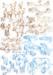 Life drawing - Animals