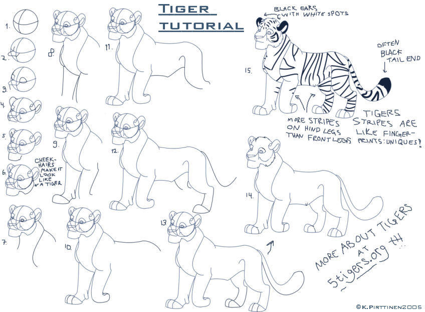 Tiger tutorial by Tigerty