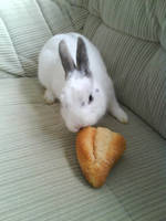 Felix eats a bun by bttfmjffan