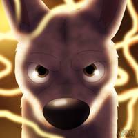 If the Dog Believes it... by ViriZona