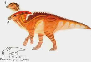 Parasaurolophus walkeri by ZeWqt