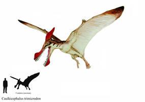 Caulkicephalus trimicrodon by ZeWqt