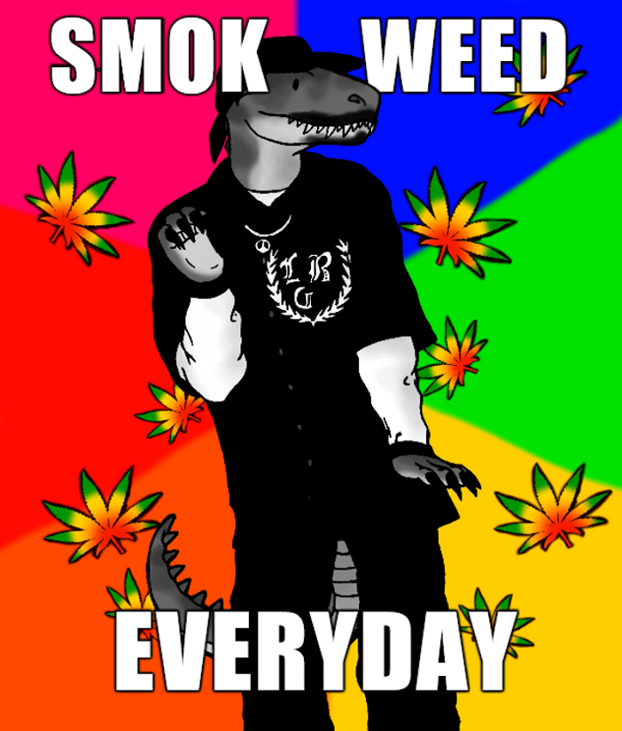 smok_weed_everyday__by_zewqt-d8p4srf.png