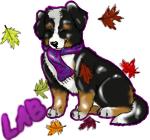 Lab and Ri fall tag example2 by lilblueaussiegirl