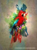 funky macaw by tazwaraz