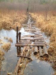 Flooded Pathway Bridge