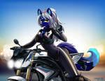 Sexy motorcyclist