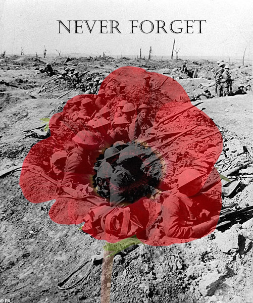Remembrance day poppy day by daliscar on deviantart remembrance day poppy day by daliscar mightylinksfo