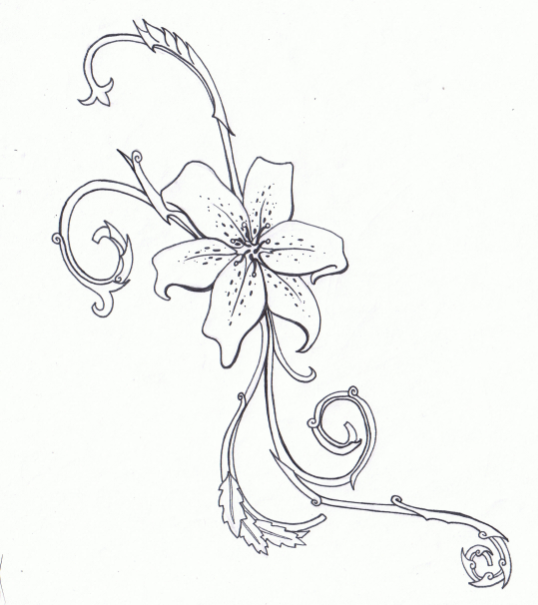 Lily Tattoo Line Drawing : Tiger lily tattoo by karianasan on deviantart