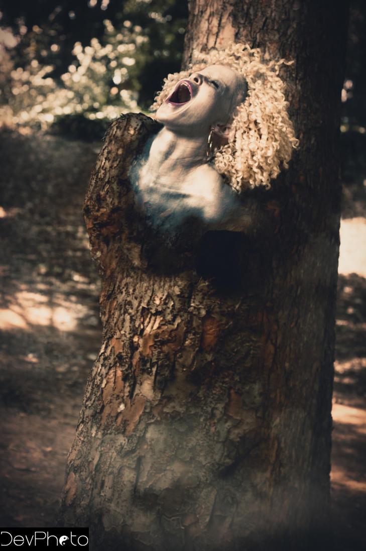 Break Free The Forest by Debirukai