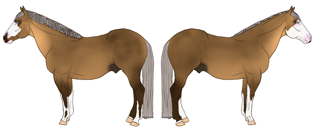 WBS Anything Butt Fancy by angry-horse-for-life