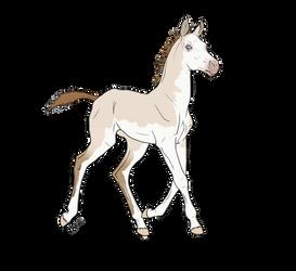 WBS Golden Shale Foal