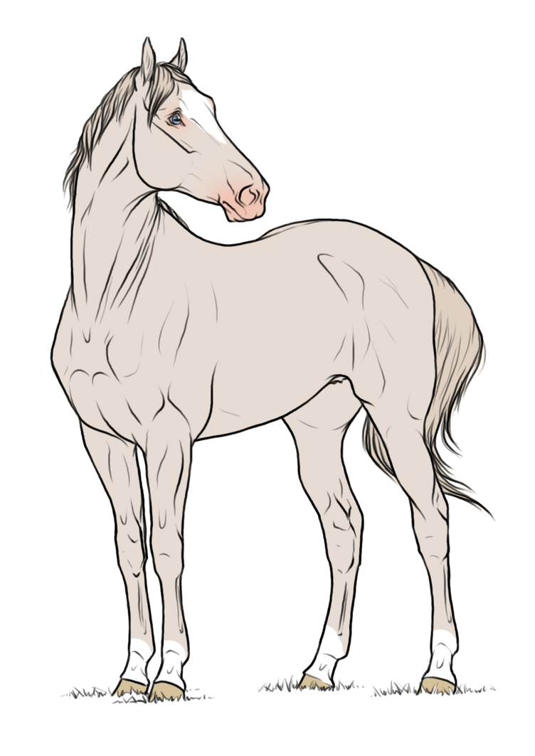 WBS Valhalla *SOLD* by angry-horse-for-life on DeviantArt