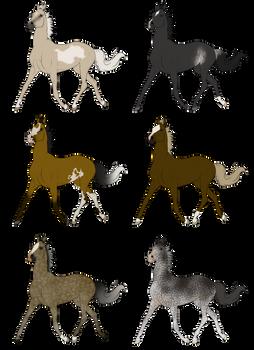Arabian Adopts 1 *OPEN*