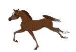 WBS Daemon Fyre - Foal Ref
