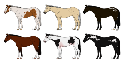 Any Breed Adopts 023 *OPEN*