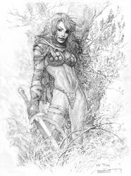 Red Sonja commission by LiamSharp