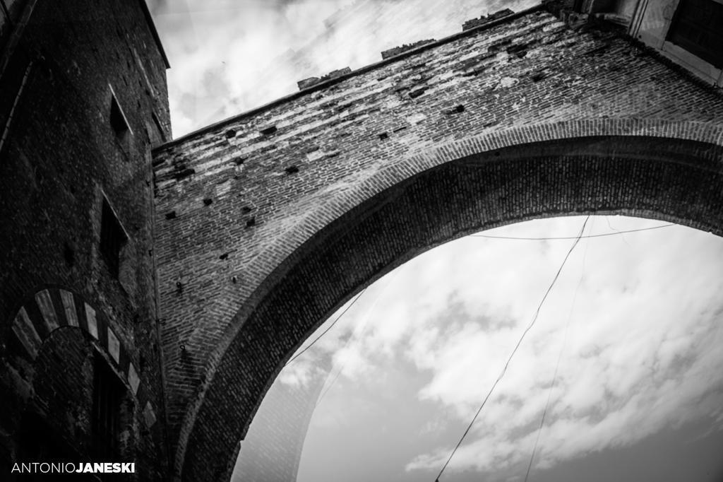 Verona by Janeski