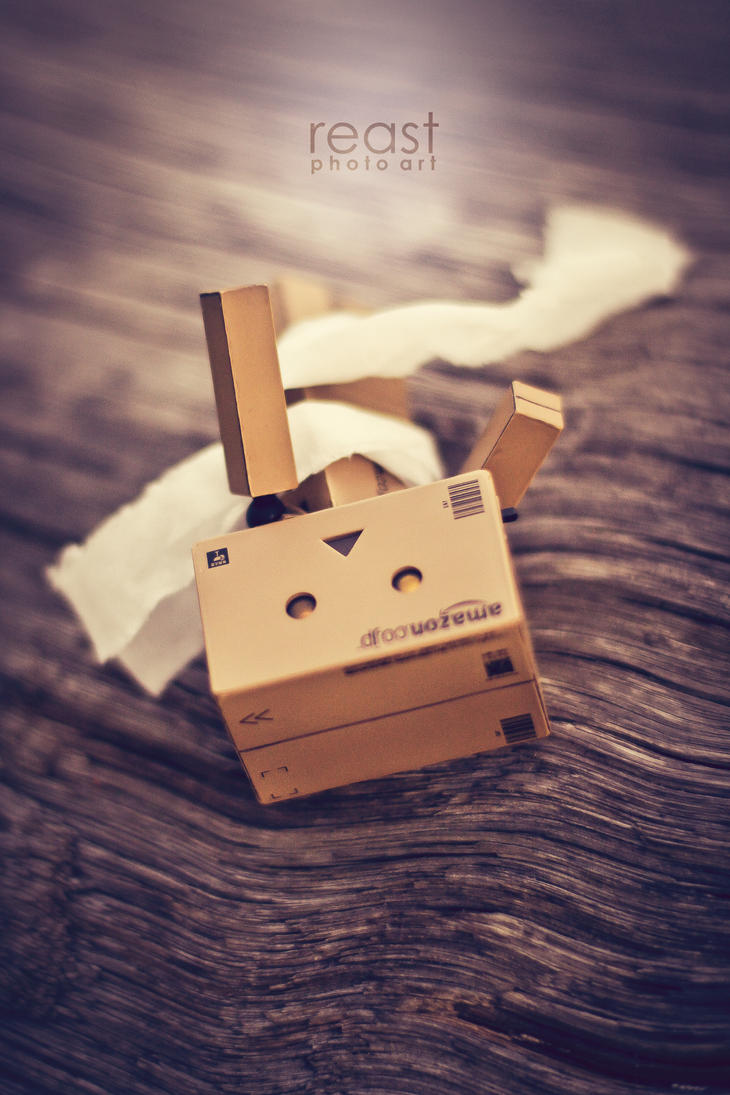 ...boudoir danbo on the the timber... by reastphoto