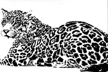 Leopard lounging by designchick69