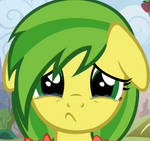 Apple Fritter - You don't like ponys?