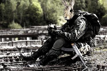 Stalker Bunny by karatealive