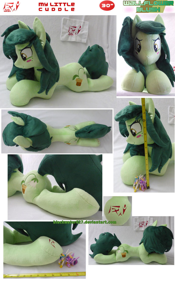 My Little Cuddle: Wallflower Blush (EG Pony) by BlackWater627