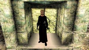 Langwen at the Ayleid Tyrant's Door