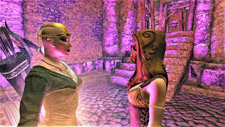 Bosmer and Imperial Informer at Fort Cuptor by FemaleBosmerAlways