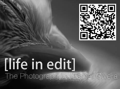 Life in Edit QR Code 01