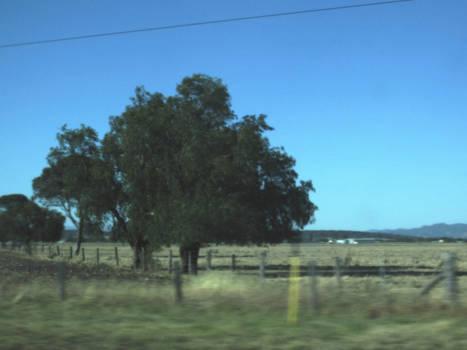 October 2012 Road Trip - Part 20