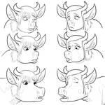 Cmsn Brooks Cows 5