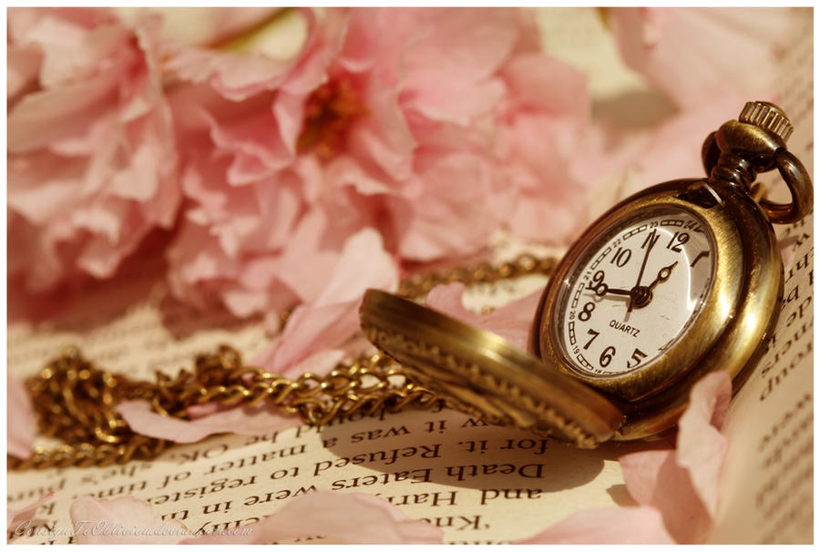 Time is Sweet