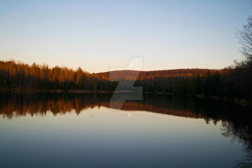 Reflection by yobanda