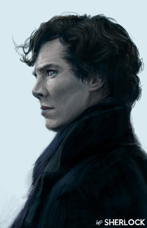 Sherlock - I am not a Hero by W-E-Z