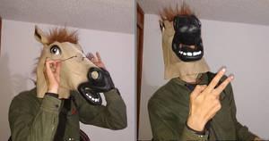 educated horses
