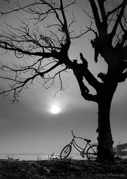 Lonely Bicycle