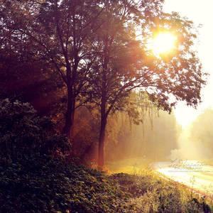 Shining Through by IndigoSummerr