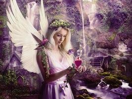 Fairy Manip