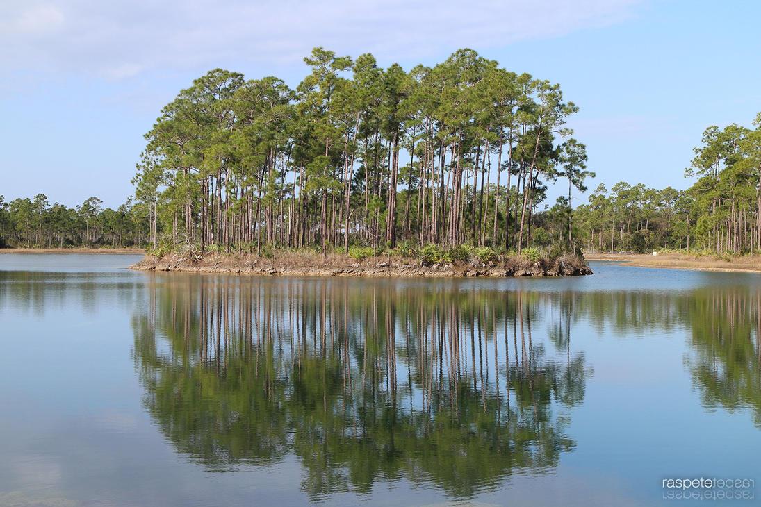Aligator Island by raspete