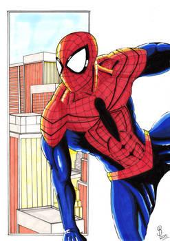 Spider-Man Redisigned